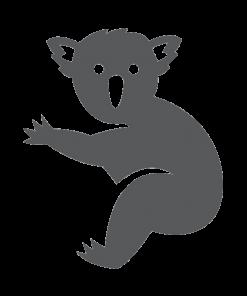 Koala-Grey